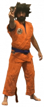Adrien HOUSSAI - Son Goku